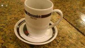 Merzenich1